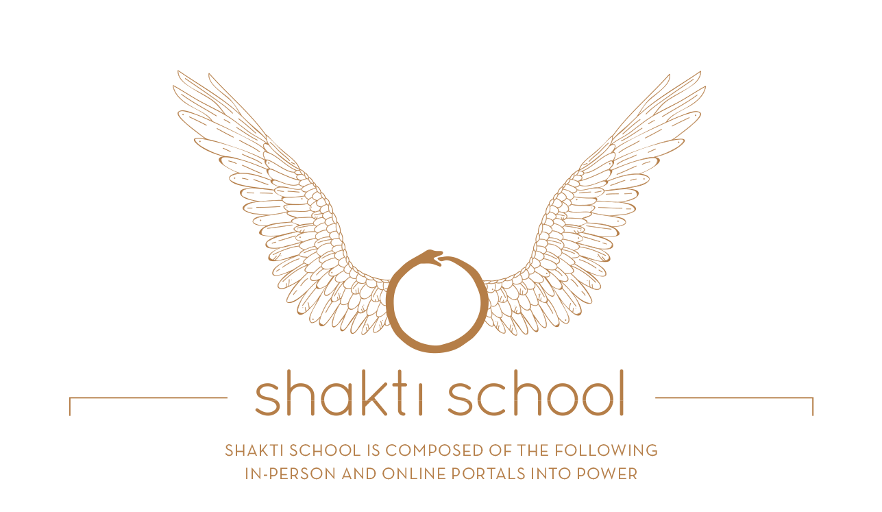 shakti school main diagram-new-gold